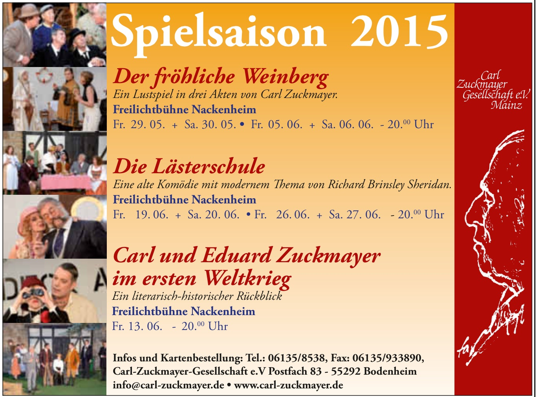 Spielsaison 2015 CZG